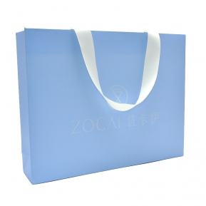 China Custom elegant free logo printing matte paper finish shopping bag for gift and jewelry factory
